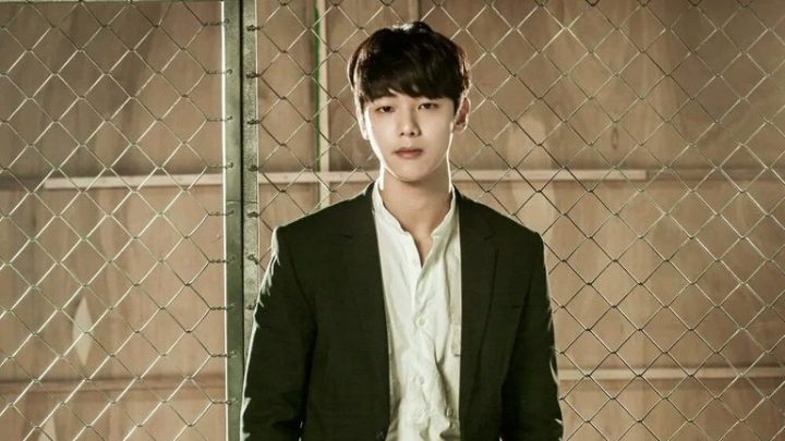 best idol kdrama actors 2016 kang minhyuk